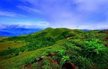 Coorg Wayanad Ooty Tour package from Bangalore 8 Days