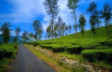 Wayanad tour package from Bangalore 2 days