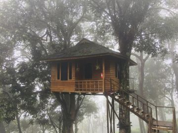 Kerala Exlusive Tree House Honeymoon Package