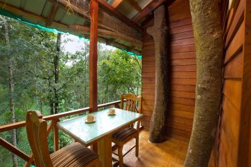 Kerala Honeymoon Package With Tree House Private Pool Villa