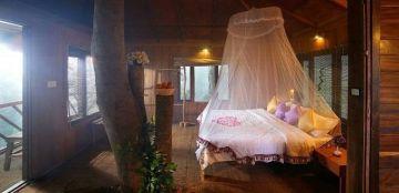 Kerala Exlusive Tree House Honeymoon Package