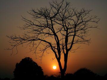 TravBuddies Tour To Ayodhya Hills 2N / 3D