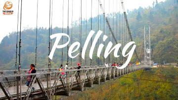 Summer Vacation in pelling  3 days Trip @9999 INR |Call 9818705209 |TriFete Holidays Pvt. Ltd, Versova Mumbai
