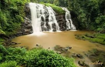 Coorg Tour Package from Bangalore 4 days