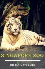 Simply Singapore Package From Chennai Rs. 11500