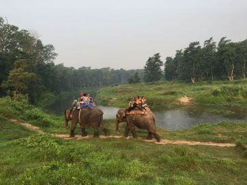 3 NIGHT 4 DAYS TOURS OF CHITWAN NATIONAL PARK