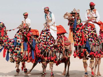 Rajasthan Tour Package with Luxury Hotel 5 days Trip @18999 INR | Call 9818705209|TriFete Holidays Pvt. Ltd, Versova Mumbai