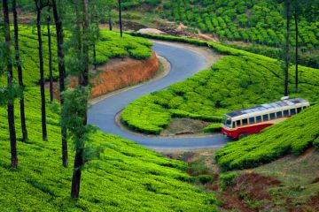 Uttarakhand Special tour package for 7 night 8 days on @20500