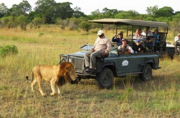 Kruger Park, Garden Route and Cape Town Tour