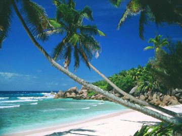 Visit Baga Beach On Goa 7N/8D Trip PP@23999 INR | Call 9818705209|TriFete Holidays Pvt. Ltd, Versova Mumbai