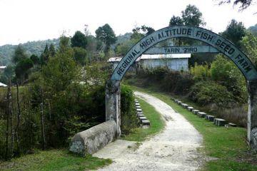 Ziro Valley To Arunachal Pradesh
