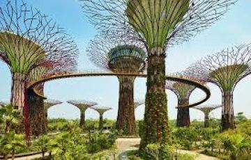 singapore Tour Package Rs.21900 With Flight Ticket // Call 8072595319