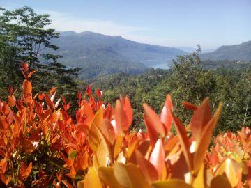 Private 03 days tour Kandy and NuwaraEliya