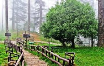 Dehradun, Mussoorie, Dhanaulti, Tehri Dam Tour Package.