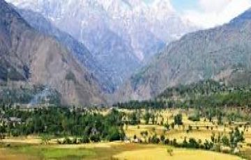 Amazing Palampur Package