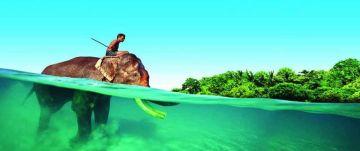 Blue Andaman