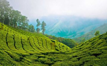 Awesome Kerala Tour Package 07 Nights 08 Days