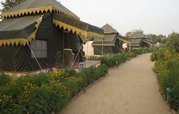 The Pind City