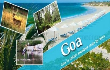 An Amazing Week In Goa 8 N & 9 D