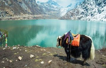 North Sikkim Package Tours