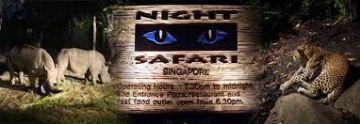Singapore tour at your budget