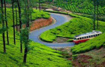 Amazing Kerala 3 Night 4 Days Package