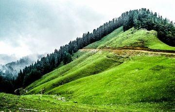 Shikari Devi Trek - Janjheli