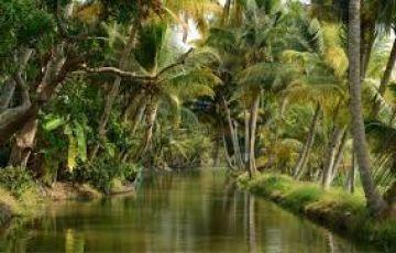 Family Vacation - Kerala