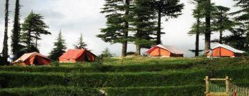 Enjoy Adventure In Kanatal