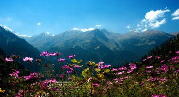Escape to Himachal