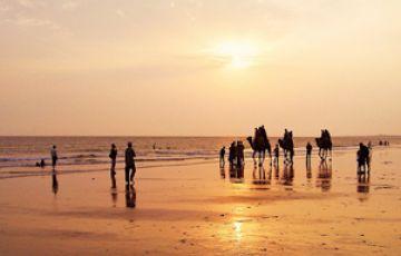 IHC-53 Gujarat Desert Beach Tour