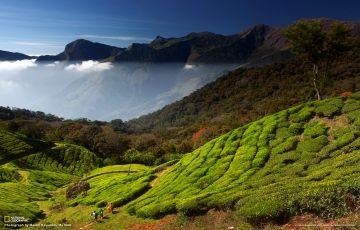 7 Dys Kerala Monsoon Dlx Pkg Rs.12000 Pp