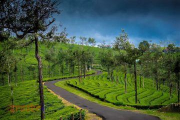 Heavenly Kerala 6 Night / 7 Days