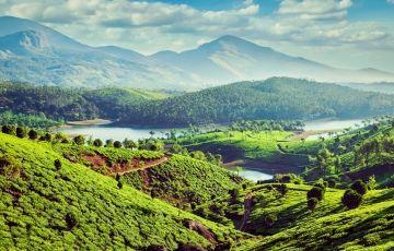 Group - Kerala Tour