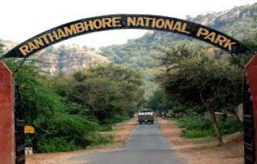 TPJ-41 Short Escape to Ranthambore