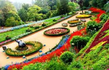 OOTY TOUR PACKAGE 4 PERSON BEST PRICE