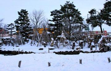 Amazing & Beautiful Hokkaido  20 Pax & Above