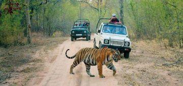 Rajasthan Trip 9 Days