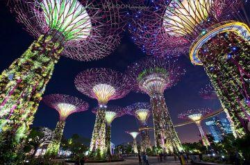 Singapore Malaysia