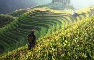 Gangtok Kalimpong and Darjeeling Tour 6Days