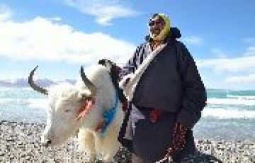 Majestic Spiti Valley Tour