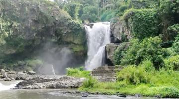 Explore Ubud & Bali Tour