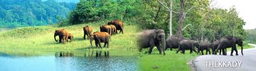 EXCITING WEEKEND KERALA TOUR