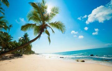 Sri Lanka Holiday