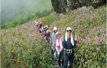 Adventurous Group Tour-Valley of Flowers-