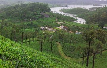 Parambikulam-Athirapally -Walaparai Packages
