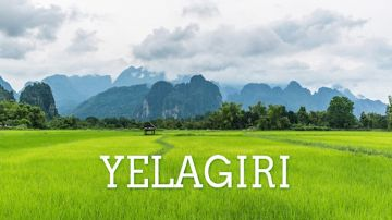 ENJOY NATURE @ YELAGIRI