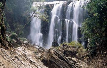 Adventurous raw nature - Yellapur, Karnataka