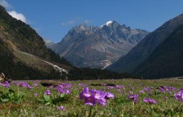 Essence of Sikkim